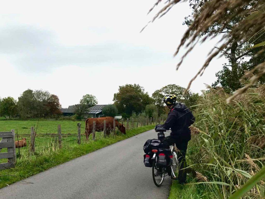 Nederländerna Holland, ko cykel