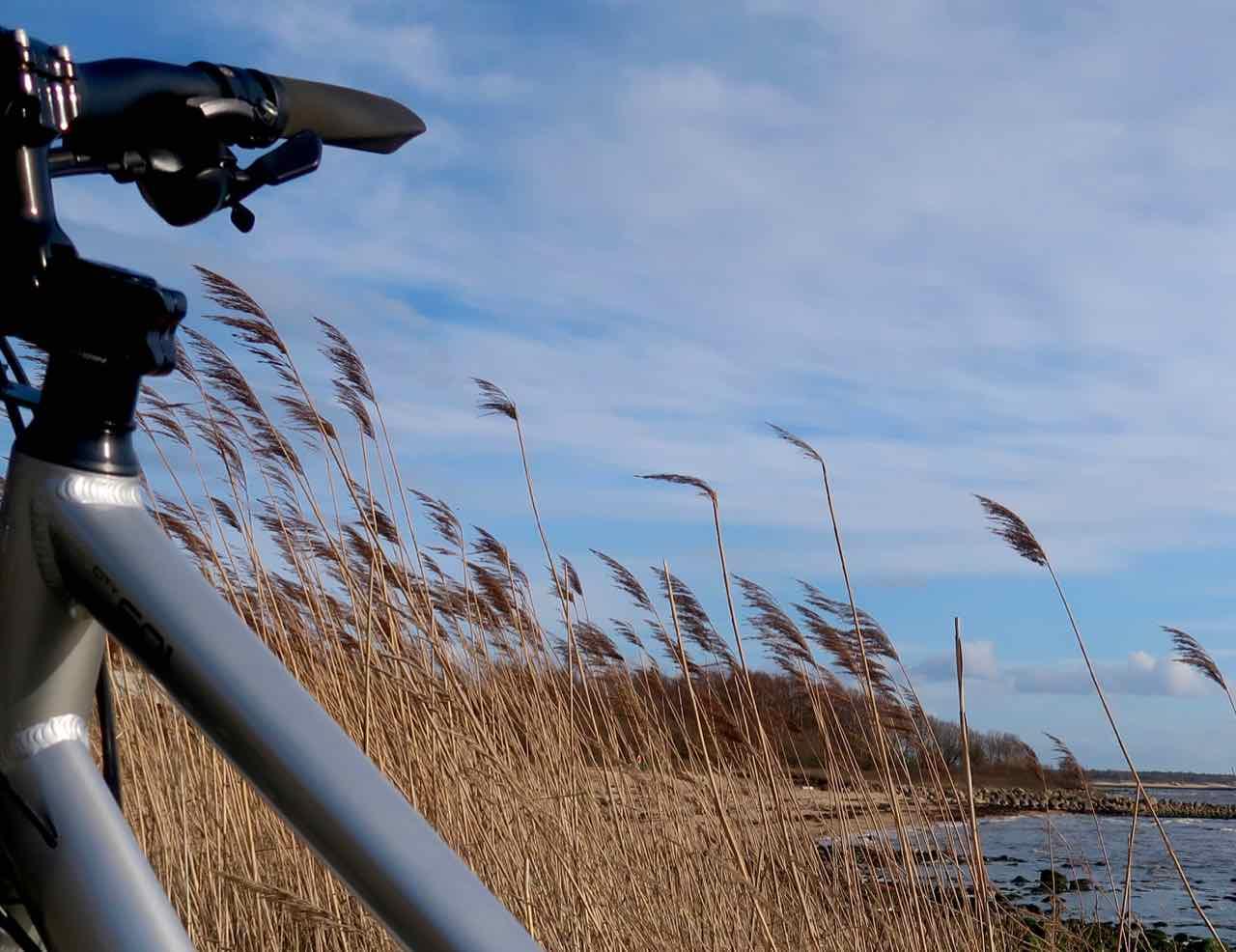 Nishiki cykel Bjäre