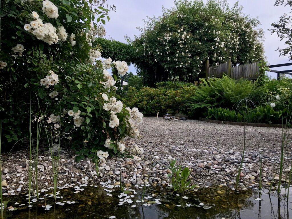 Trädgård trädgårdsrunda