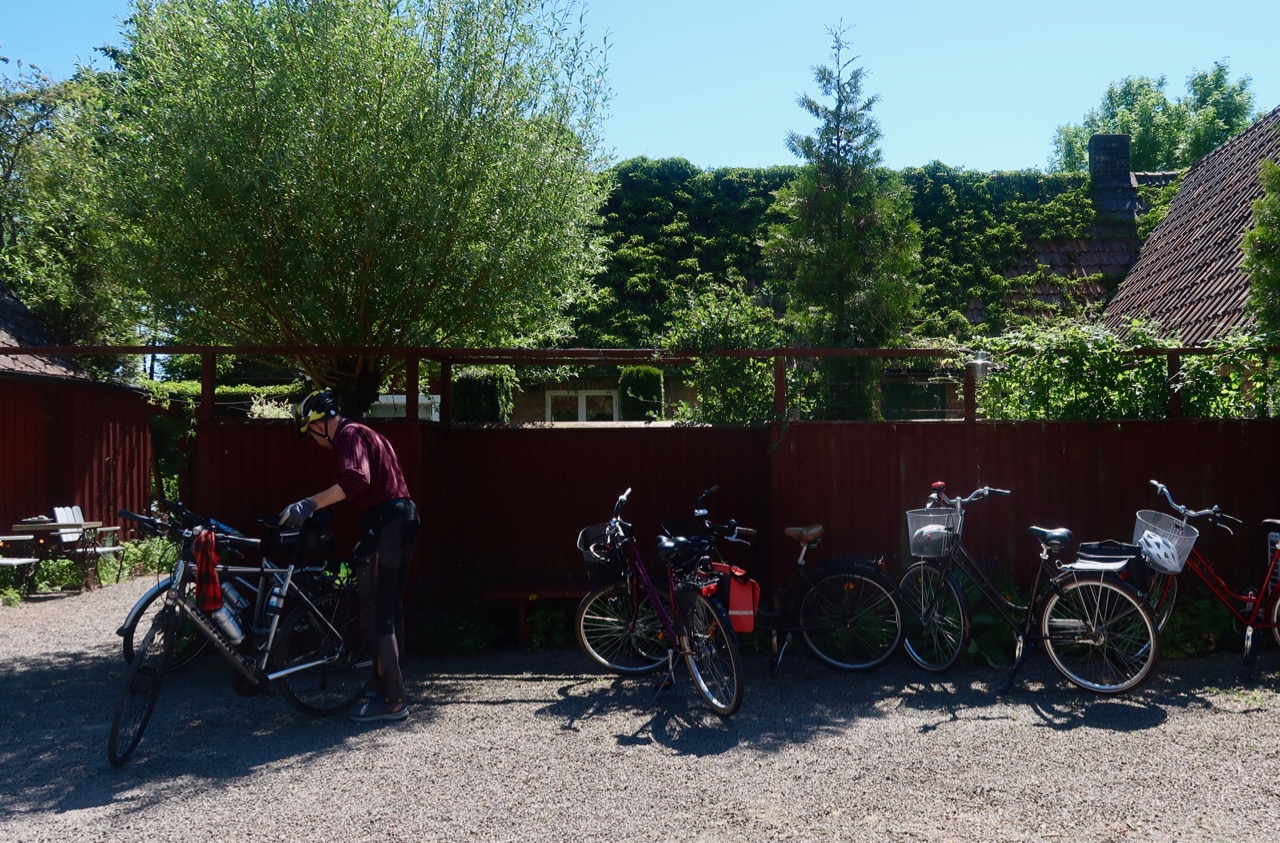 Cykel och trädgård